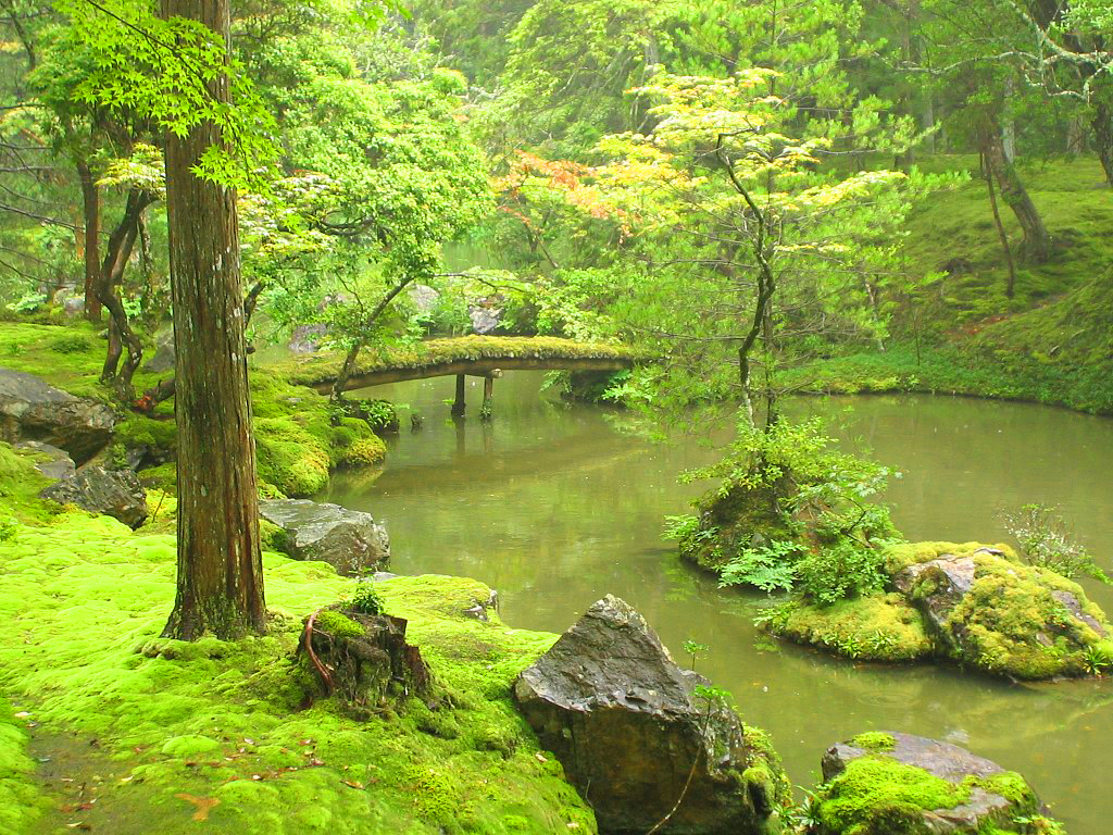 The Garden of Saiho Ji In, Japan