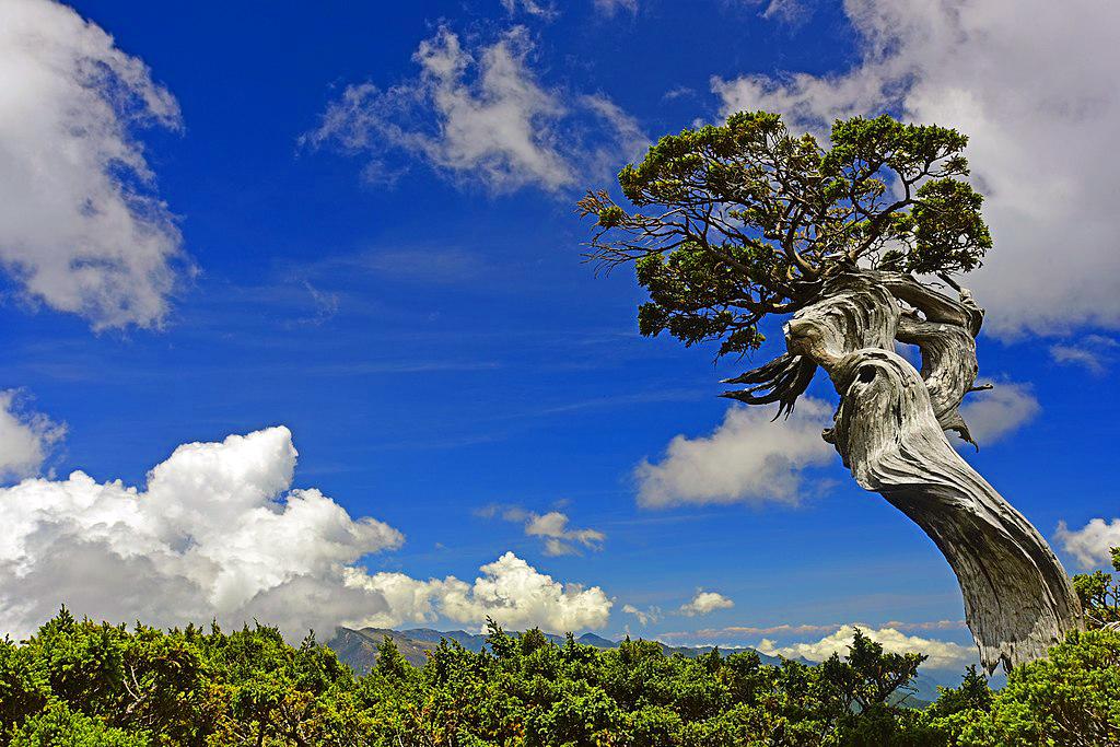 Yushan National Park, Taiwan