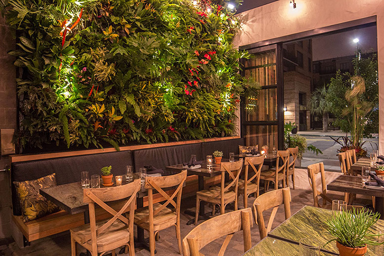 The Patio on Goldfinch Design